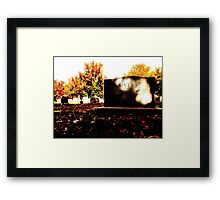 Row Eighteen, Plot Twenty Framed Print