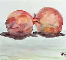 pomegranate pair by RSstudio