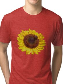 Harvest Sunflower  Tri-blend T-Shirt