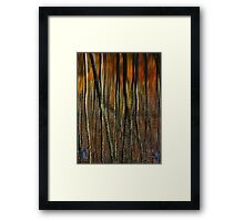 Lakeside Reflections Framed Print