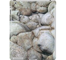 Beach 14 iPad iPad Case/Skin