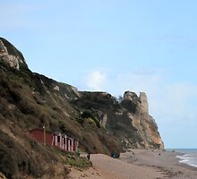 Branscombe Beach 1 by lynn carter