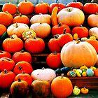 Pumpkins by melek0197