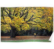 Autumn run Poster