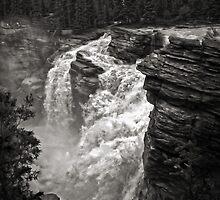 Waterfall in Jasper National Park by Gregory Dyer