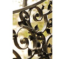Grave Yard Gate Photographic Print