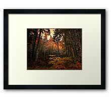 Someone Throw The Switch ~ Fall Colors ~ Framed Print