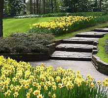 Steps into spring - Keukenhof (NL) by bubblehex08
