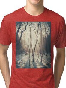 Peaceful Forrest Tri-blend T-Shirt