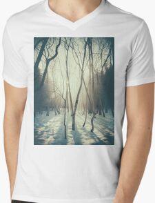 Peaceful Forrest Mens V-Neck T-Shirt