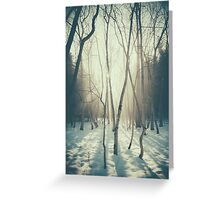 Peaceful Forrest Greeting Card