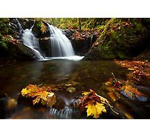 Gorton Creek Falls Photographic Print
