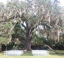 Wedding by CreativeKitty