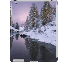 Winter Reverie iPad Case/Skin