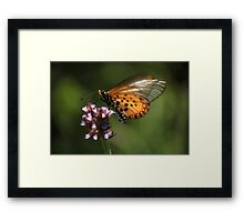Your DReam Is My REality Framed Print