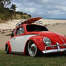 Surfing Beetle by Keith Hawley