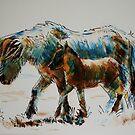 Dartmoor Ponies by MikeJory