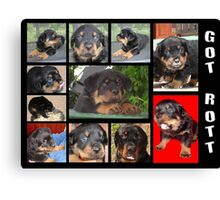 Rottweiler With Got Rott? Message Collage Canvas Print