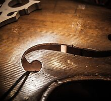Contrabass Music Instrument by glymps
