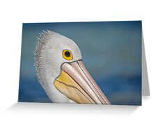 Pelican portrait Greeting Card