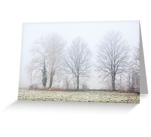 Foggy Winter Trees Greeting Card