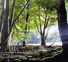 Woodland Dawn by Paula Oakley