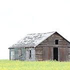 A True Epitome of Early Alberta Prairie Farming Structures by Brenda Roy