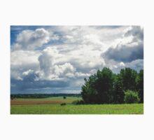 Beautiful landscape in Latvia Baby Tee