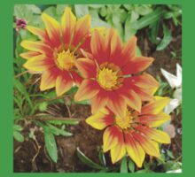 Three Bright Colored Gazania Flowers and Garden One Piece - Short Sleeve