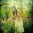 rose garden  by mayumi