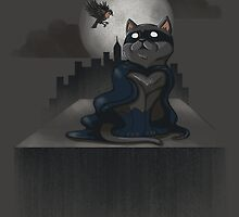 Cat Man and a Robin by JessieSima