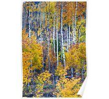 Aspen Tree Magic Cottonwood Pass Poster