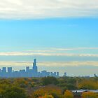 Chicago from Lincoln Park Rooftop by Imagery