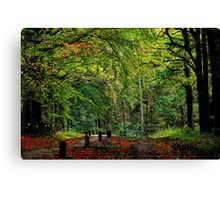 Saying Good-bye to October Canvas Print