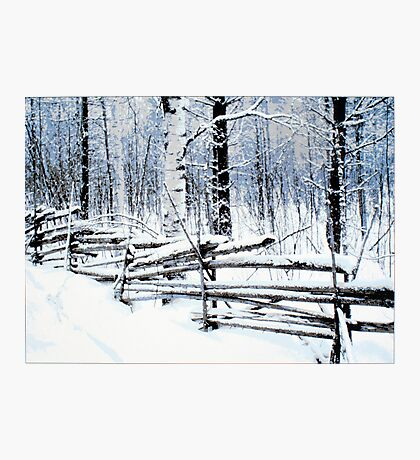 Old Fence Photographic Print