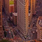 Flat Iron by Mark Walker