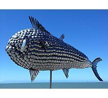 Utensil fish. North Queensland  Photographic Print