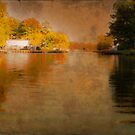 Deep Reflection by Susan Werby