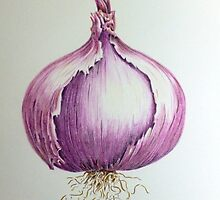 Red Onion by Michelle Pullen