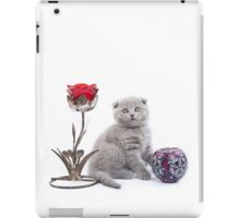 Fluffy funny gray kitten British cat iPad Case/Skin