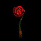 A Simple Rose by Noelle Loberg