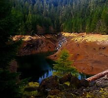 Cougar Hot Springs Oregon - Summer at the Reservoir by Extraxi