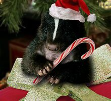 Merry Christmas Skunk by jkartlife
