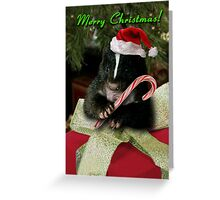 Merry Christmas Skunk Greeting Card