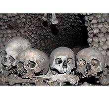 Human bones. Photographic Print