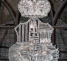 Human bones. by FER737NG
