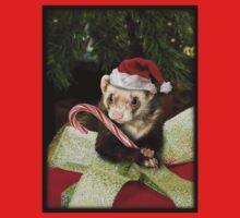 Christmas Ferret Kids Clothes