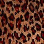 Leopard Spots Wild Cat Faux Fur Phone Case by Val  Brackenridge