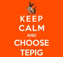 Keep Calm And Choose Tepig by Phaedrart