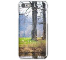 ANOTHER DAY AT THE POND iPhone Case/Skin
